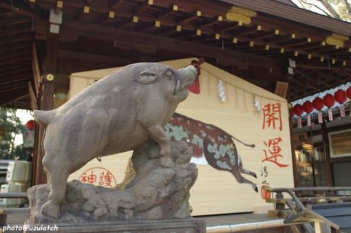 狛イノシシ