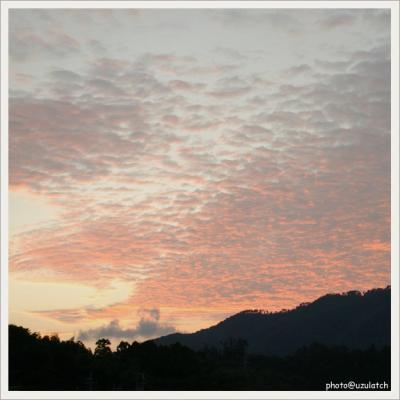 夕焼けのうろこ雲
