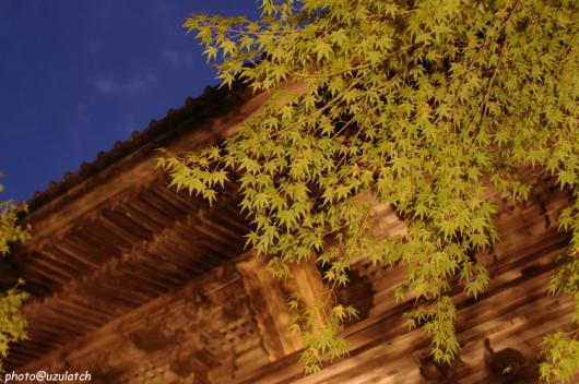 神護寺山門ライトアップ02