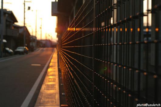 夕日色のフェンス