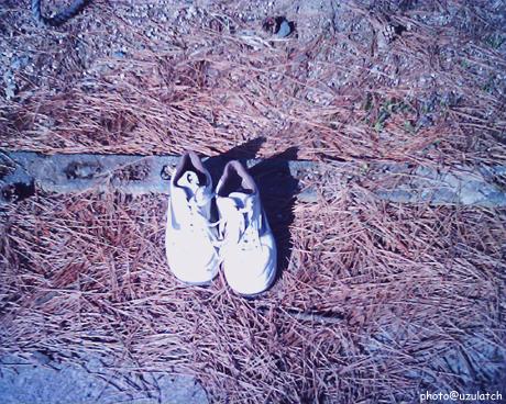 天日干しの靴