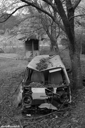 桜と廃車02