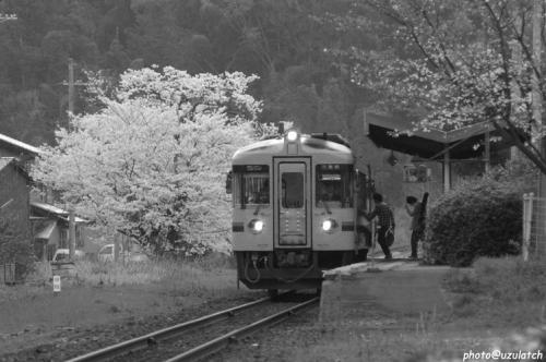 ローカル線の春01mono