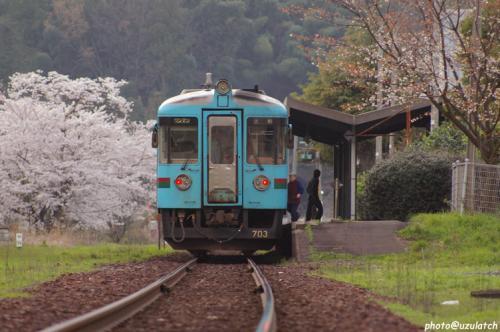 ローカル駅の春景色