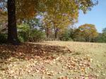 枯葉の季節