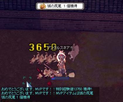 screenverdandi741-b.jpg