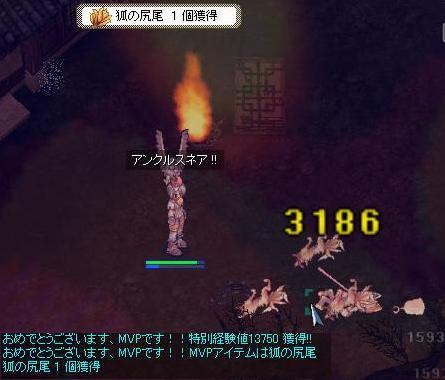 screenverdandi744-b.jpg