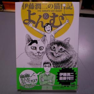 伊藤潤二の猫日記 よん&むー 伊藤潤二 講談社