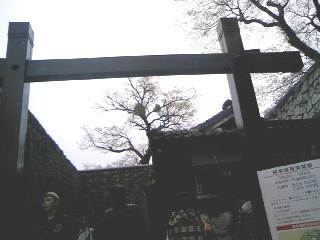 090329熊本城入り口