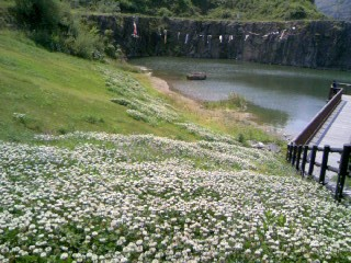 090429石神山湖と花