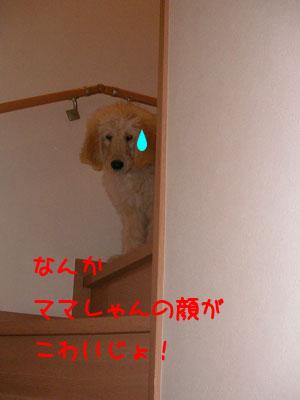 kowaijyo.jpg