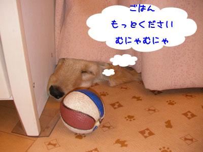 munya_20090525153919.jpg