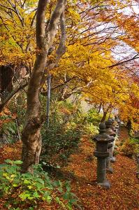 黄葉の石燈籠