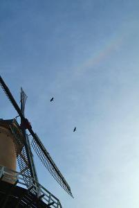 風車と天頂環