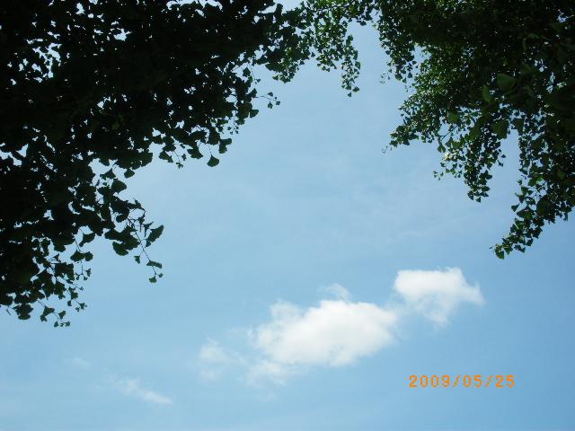 IMGP2372.jpg