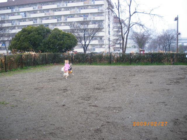 IMGP5703.jpg