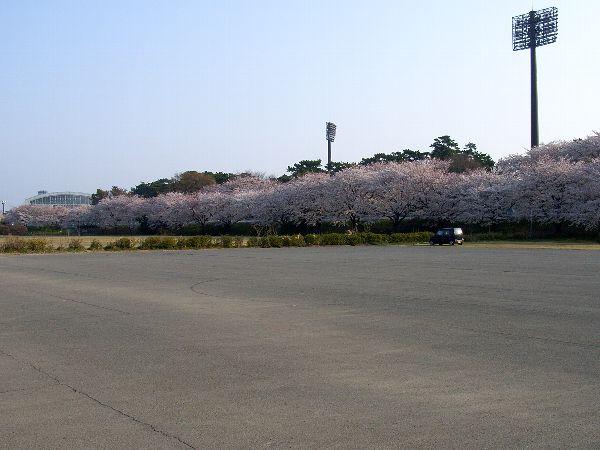 20070407_09.jpg