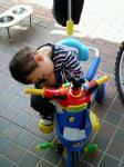 三輪車でぐっすり。