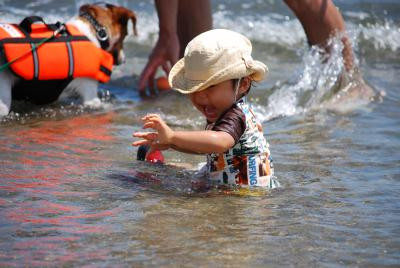 8月16日三重県香良洲の浜 152
