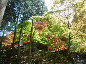 2009.5.京都 036s