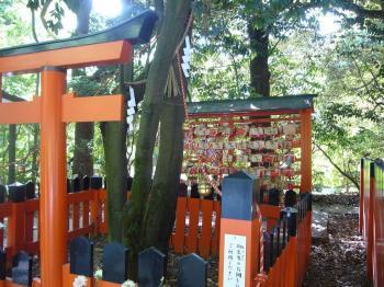 2009.5.京都 076s