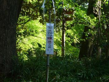 2009.5.京都 078s