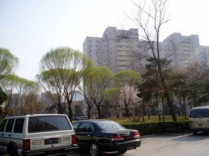 090320_hana2.jpg