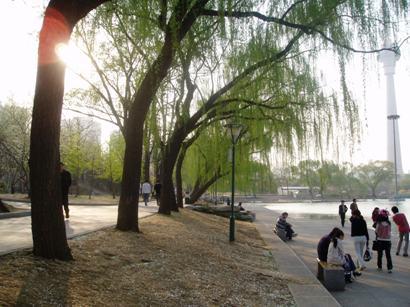 090410_yuyuantan(14).jpg