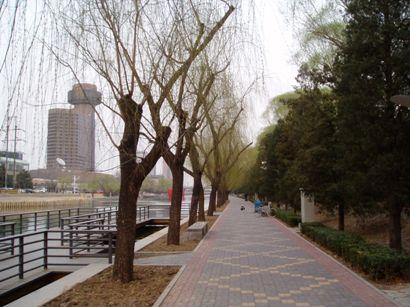 090320_hana2 (2)