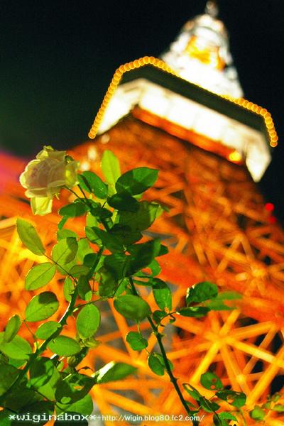 タワーではなく、バラにピント合わせてみました。 タワーはぼかしてみた (^^)