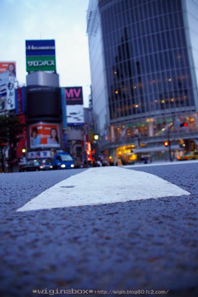 渋谷はローアングルに限るっ!! すごく好きな写真☆