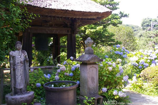 ここは雰囲気のあるお寺だったなぁ~