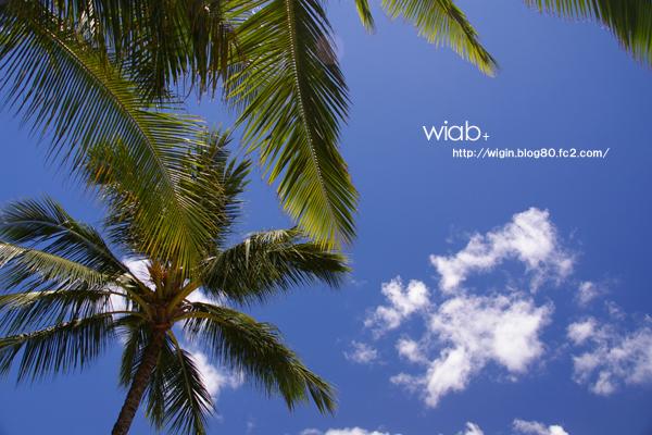 青い空ぁ白い雲ぉ