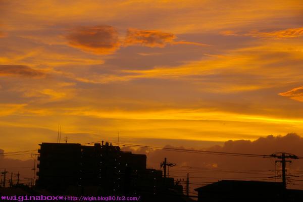 空気がキレイな日は夕焼けもキレイ。。