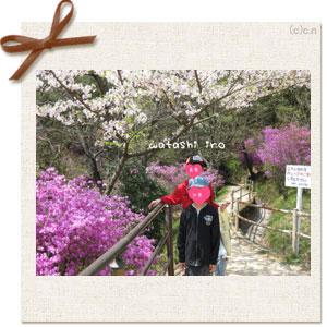 桜とこども