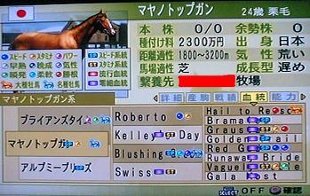トップガン系02