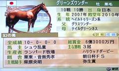 グリーンズワンダー幻の馬
