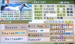 デイラミ血統表