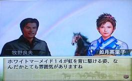 ホワイトマーメイド14虹