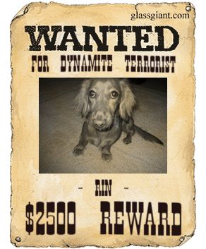 wanted_poster.jpg