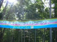 かぐや姫プロジェクト1