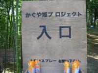 かぐや姫プロジェクト2
