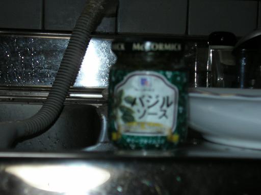SANY1267.jpg