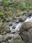 初秋の小川
