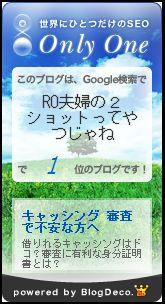 1_20090630182058.jpg