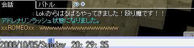 3_20081006100122.jpg