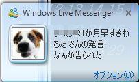 3_20090428210350.jpg
