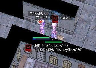 5_20090428182332.jpg