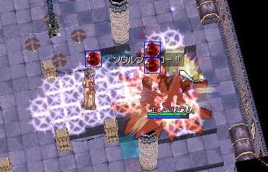 5_20090615083020.jpg