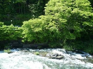 特別室から望む木曽川